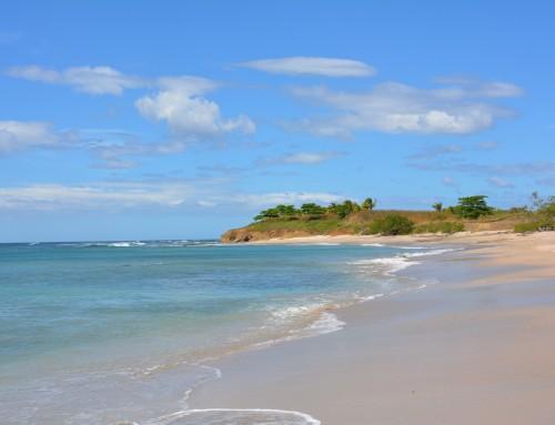 Best Beach Areas in Costa Rica