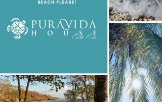 pura vida house collage