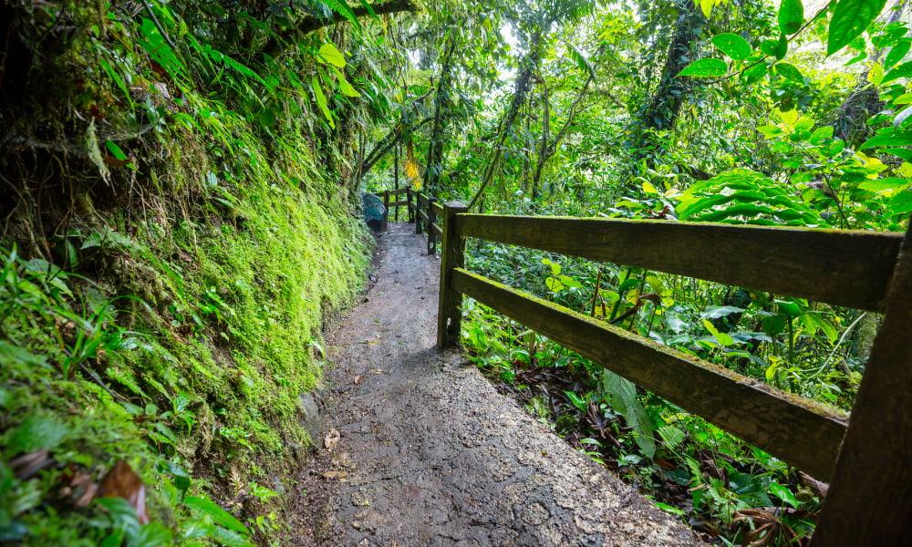 long hiking trails in costa rica