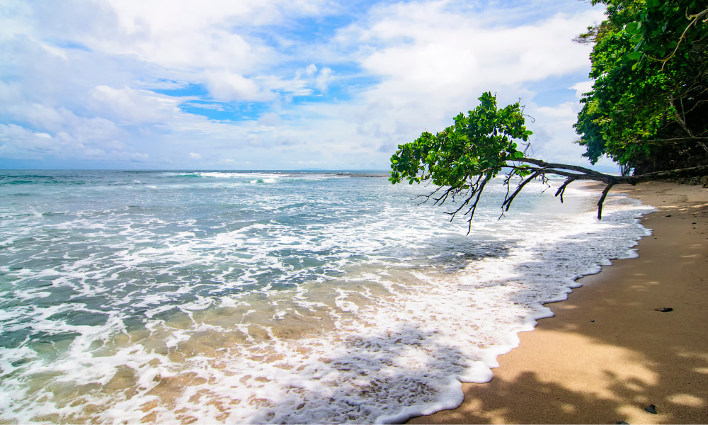 beach area in costa rica for couples