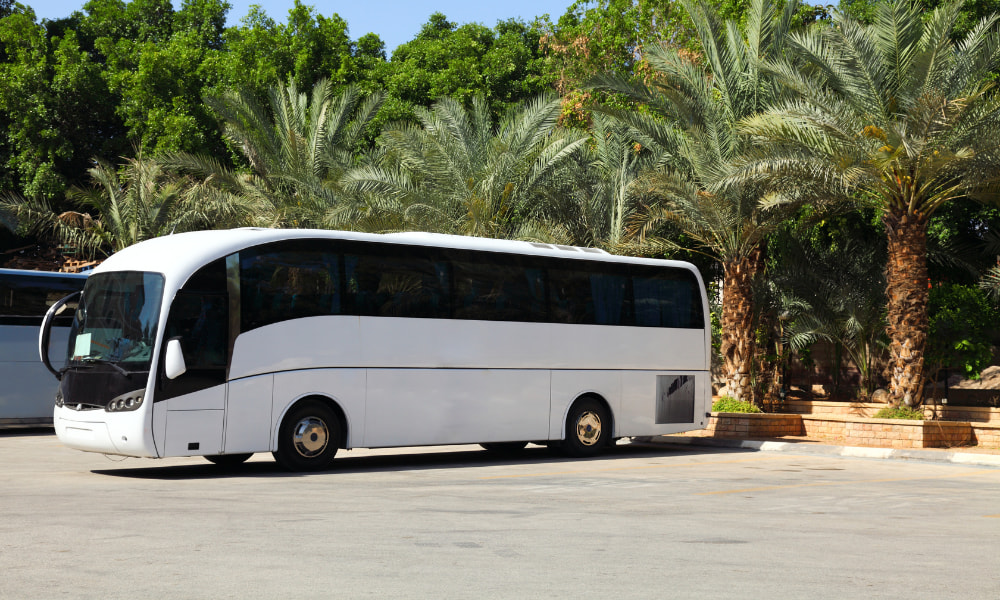 bus in costa rica