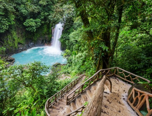 Top 5 Best Hiking Trails in Costa Rica