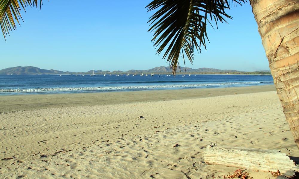 surf spot in costa rica tamarindo