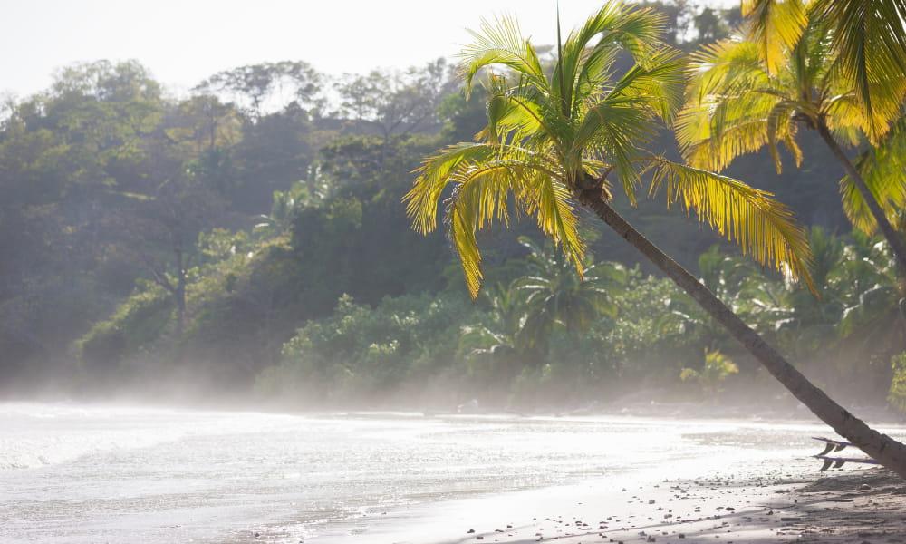 beach excursions in guanacaste